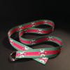 Pink and Green Alta Belt with Alta Logos