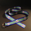 Royal Blue and Green Alta Belt  with Alta Logos